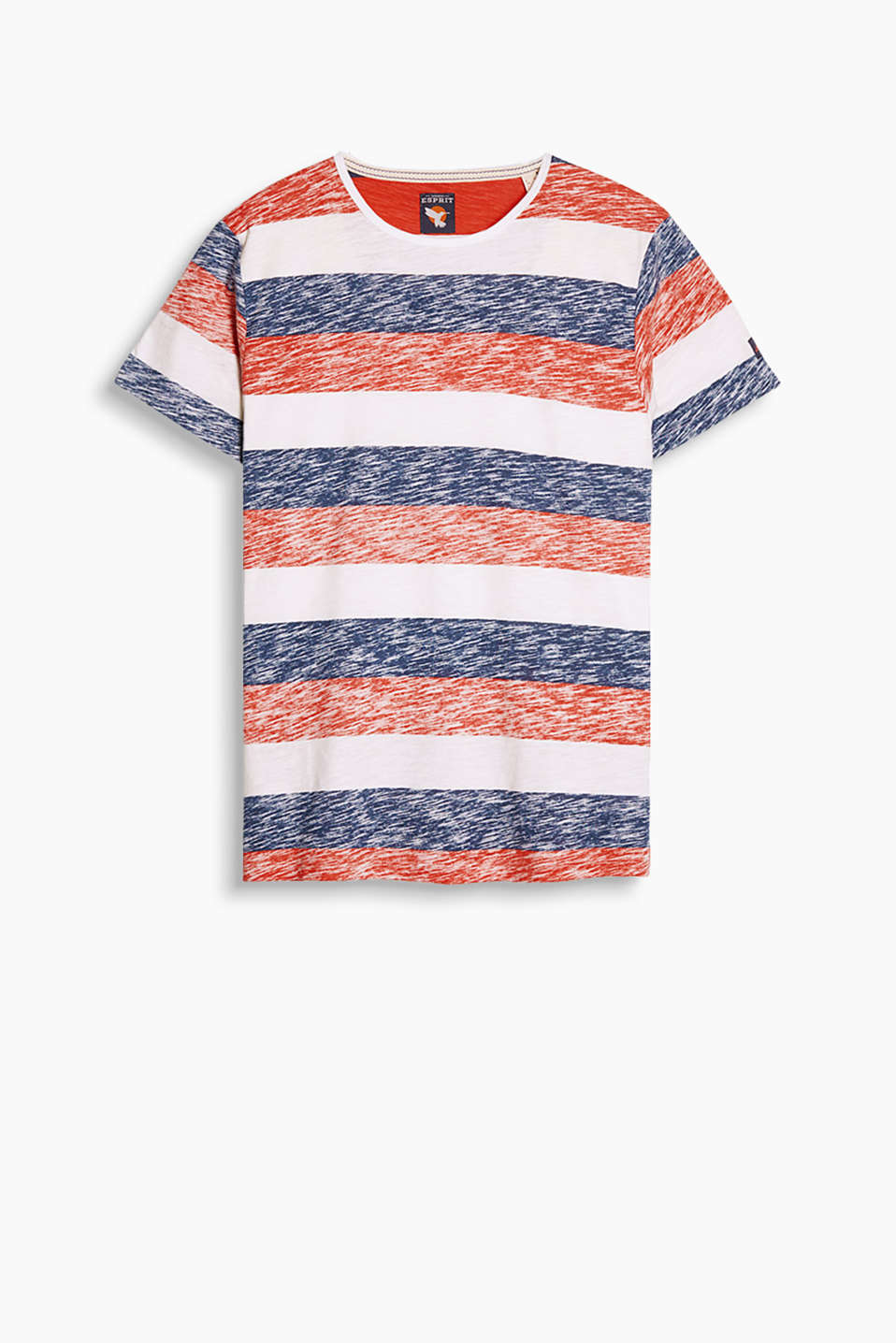 Crew neck T-shirt with trendy block stripes