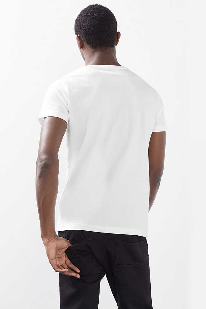 Esprit / T-shirt in jersey con stampa, 100% cotone