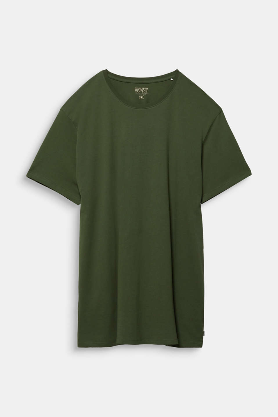 Jersey T-shirt made of 100% organic cotton, KHAKI GREEN, detail image number 6