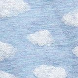 Double pack of briefs with a cloud print, PASTEL BLUE, swatch