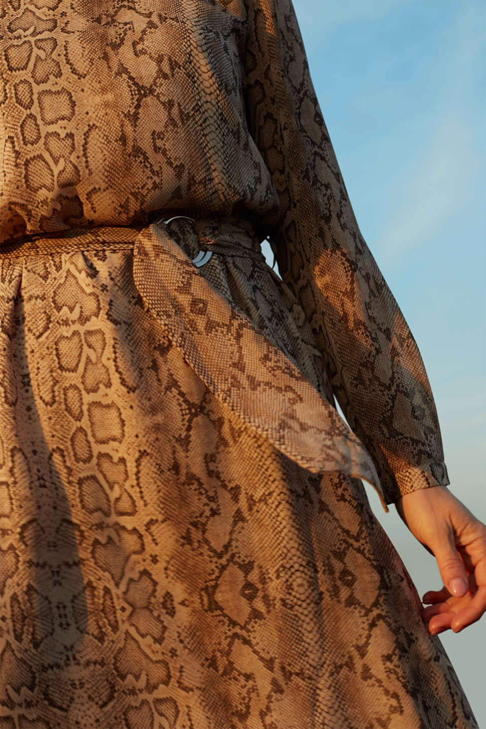 Chiffon dress with a snakeskin print and belt, LIGHT TAUPE 4, detail image number 2