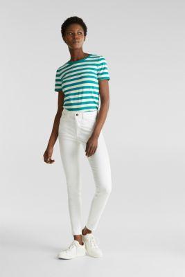 Striped, stretch cotton T-shirt, TEAL GREEN 4, detail