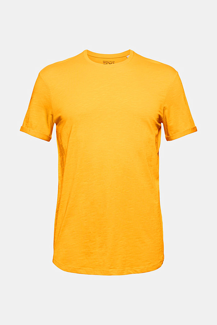 Basic-T-Shirt aus 100% Organic Cotton, SUNFLOWER YELLOW, detail image number 6