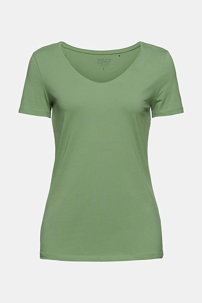 T shirt basique en coton biologique, LEAF GREEN, detail image number 7