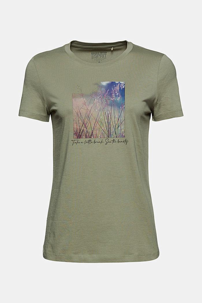 T-shirt imprimé en coton biologique, LIGHT KHAKI, detail image number 6
