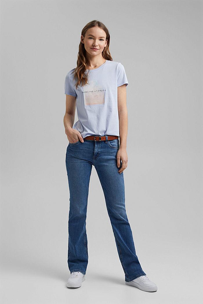 Organic cotton print T-shirt, PASTEL BLUE, detail image number 5
