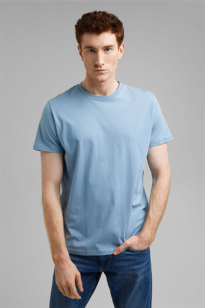 Jersey-T-Shirt aus 100% Organic Cotton, GREY BLUE, detail image number 0