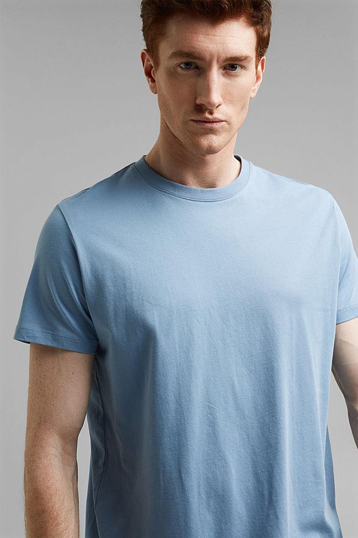Jersey-T-Shirt aus 100% Organic Cotton, GREY BLUE, detail image number 4
