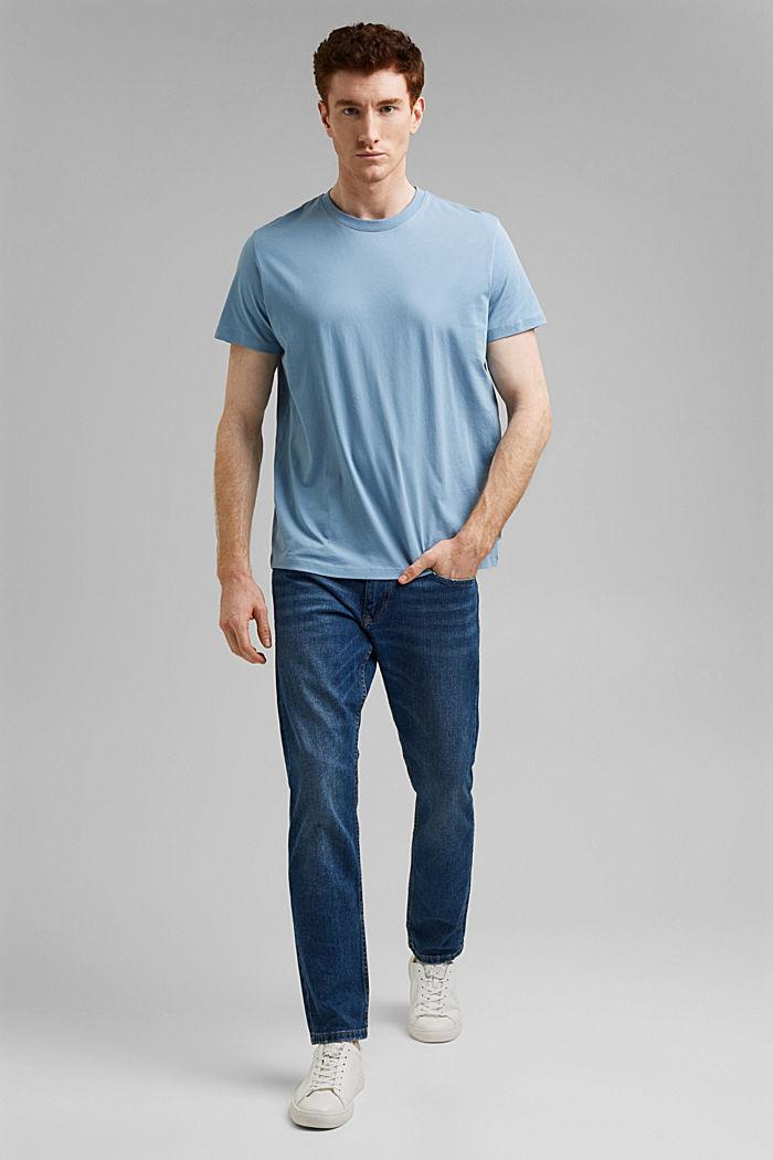 Jersey-T-Shirt aus 100% Organic Cotton, GREY BLUE, detail image number 6
