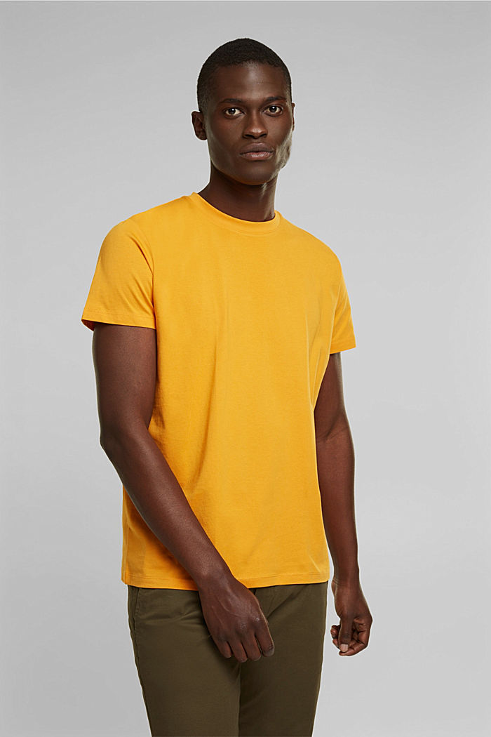 Jersey-T-Shirt aus 100% Organic Cotton, SUNFLOWER YELLOW, detail image number 0
