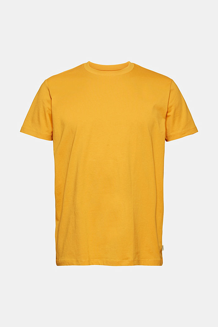 Jersey-T-Shirt aus 100% Organic Cotton, SUNFLOWER YELLOW, detail image number 5