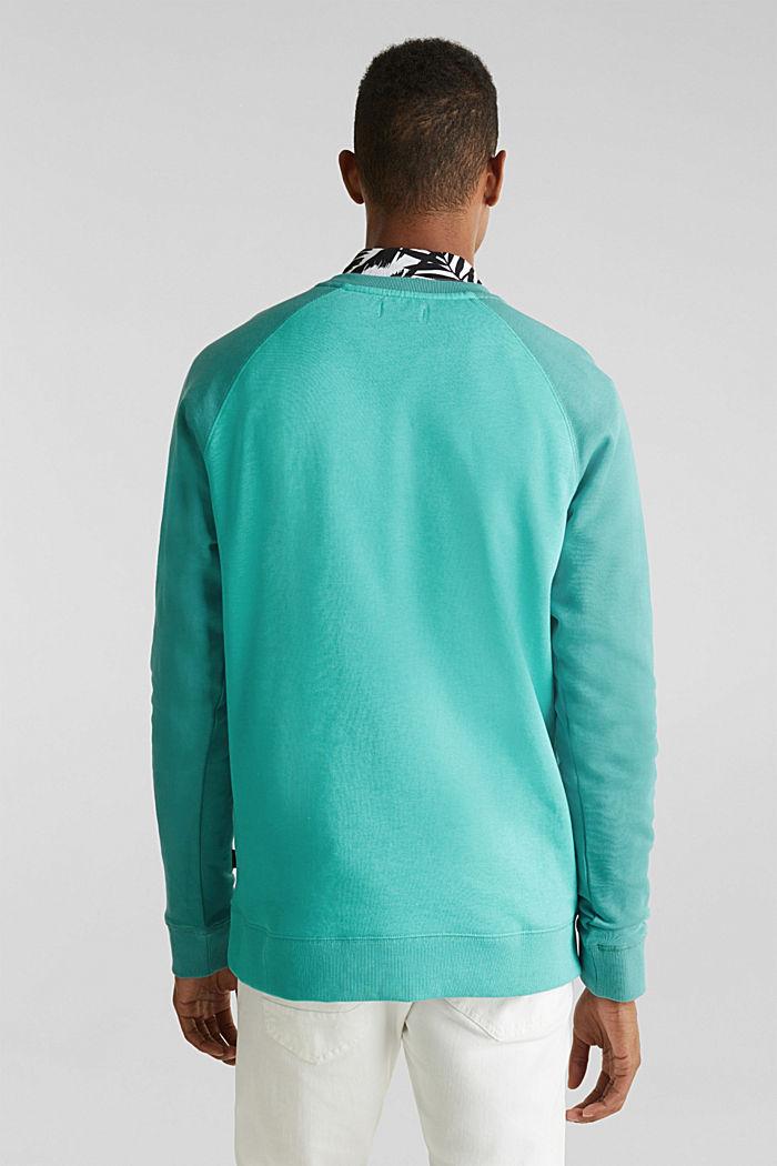 Sweat-shirt color block à motifs logo, LIGHT TURQUOISE, detail image number 2