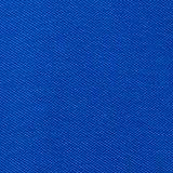 Piqué polo shirt made of 100% organic cotton, BRIGHT BLUE, swatch