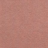 EarthColors®: cotton jumper, BLUSH, swatch