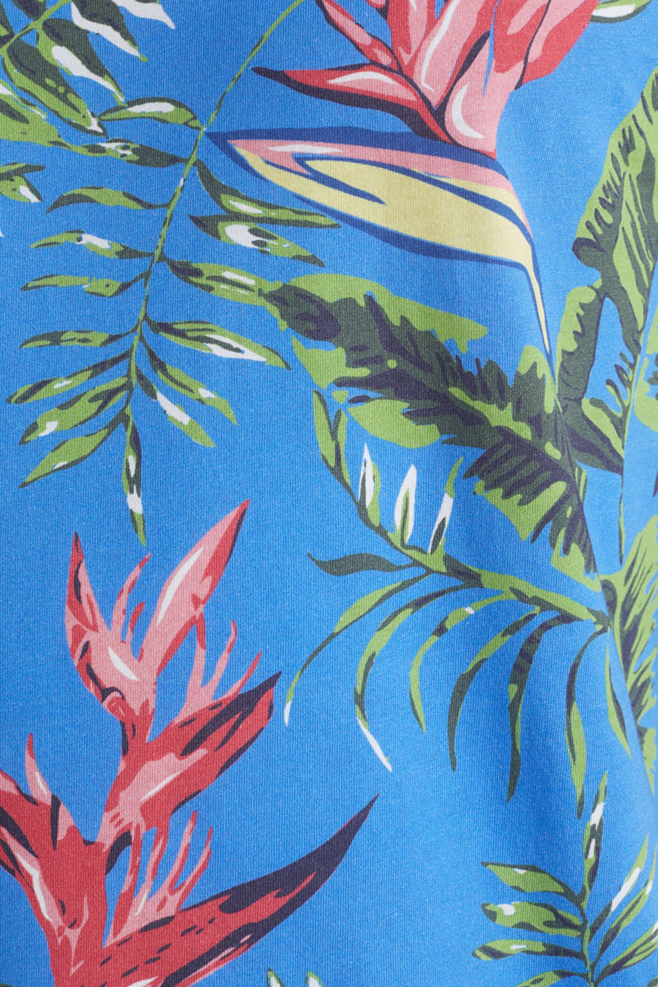 Jersey T-shirt with tropical print, 100% organic cotton, BLUE 4, detail image number 4