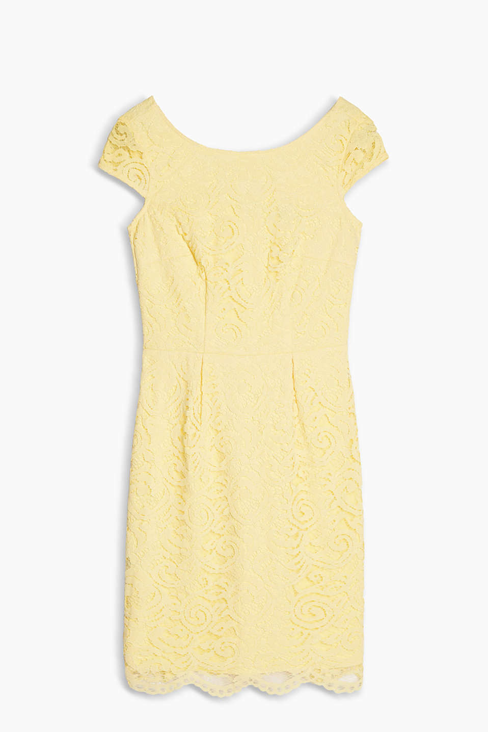 Fitted lace sheath dress with cap sleeves