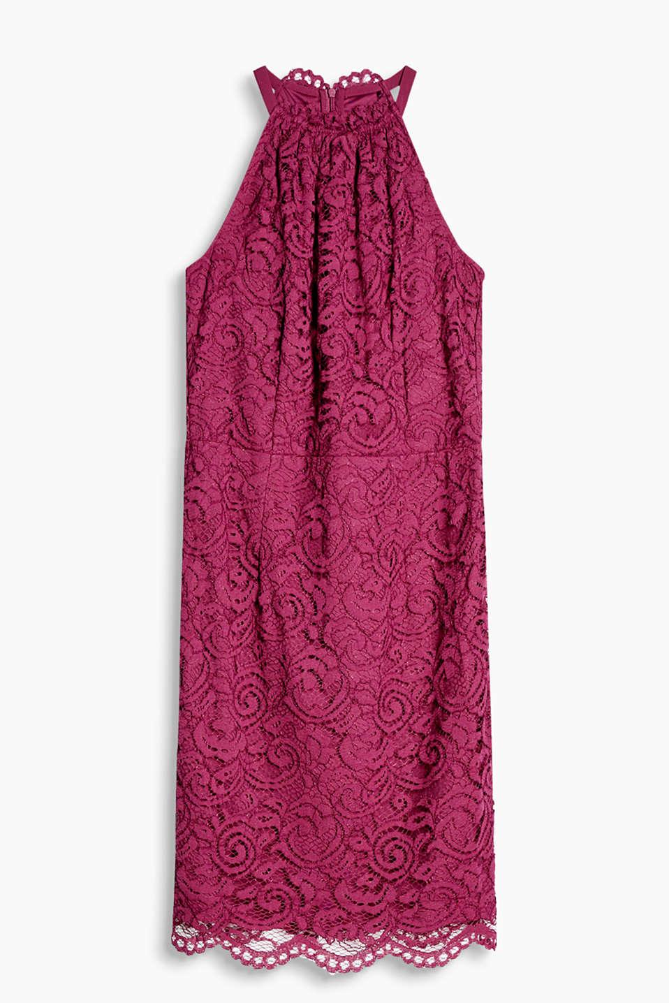 Esprit - Tailliertes Etuikleid aus feiner Spitze im Online Shop kaufen