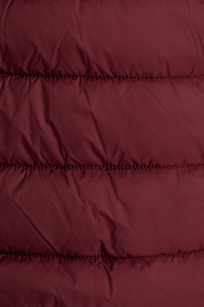 Recycled: 3M™ Thinsulate™ jacket, BORDEAUX RED, detail image number 4