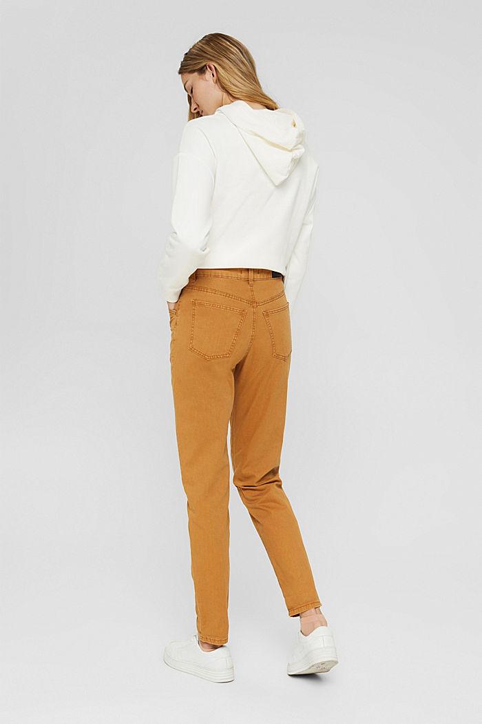Pantalón de cintura alta con botón doble, 100% algodón ecológico, BARK, detail image number 3