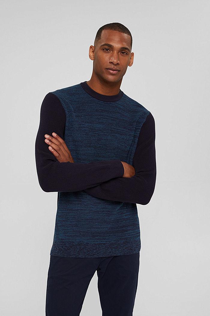 Zweifarbiger Pullover aus Organic Cotton, NAVY, detail image number 0