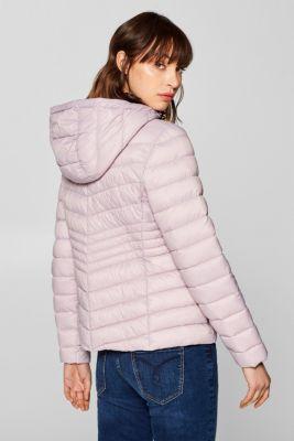 1e38a5e6043 edc – Prošívaná bunda s výplní 3M® Thinsulate v našem on-line shopu