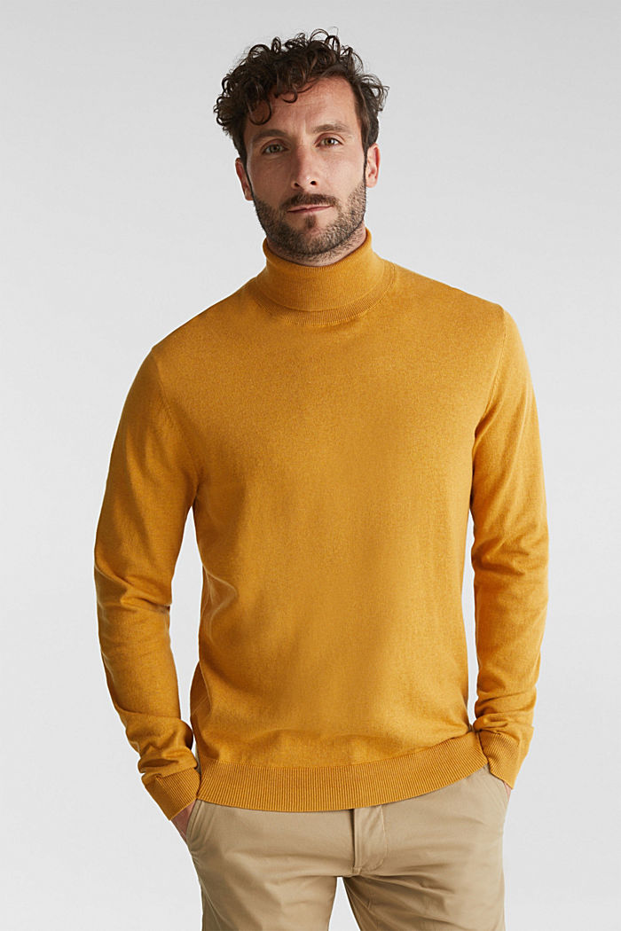 Polo neck jumper with cashmere, AMBER YELLOW, detail image number 0