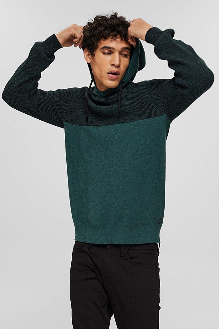 Pullover mit Kapuze aus Bio-Baumwoll-Mix, TEAL BLUE, detail image number 5