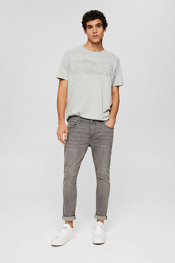 Jersey-T-Shirt mit Print, Organic Cotton, LIGHT GREY, detail image number 6