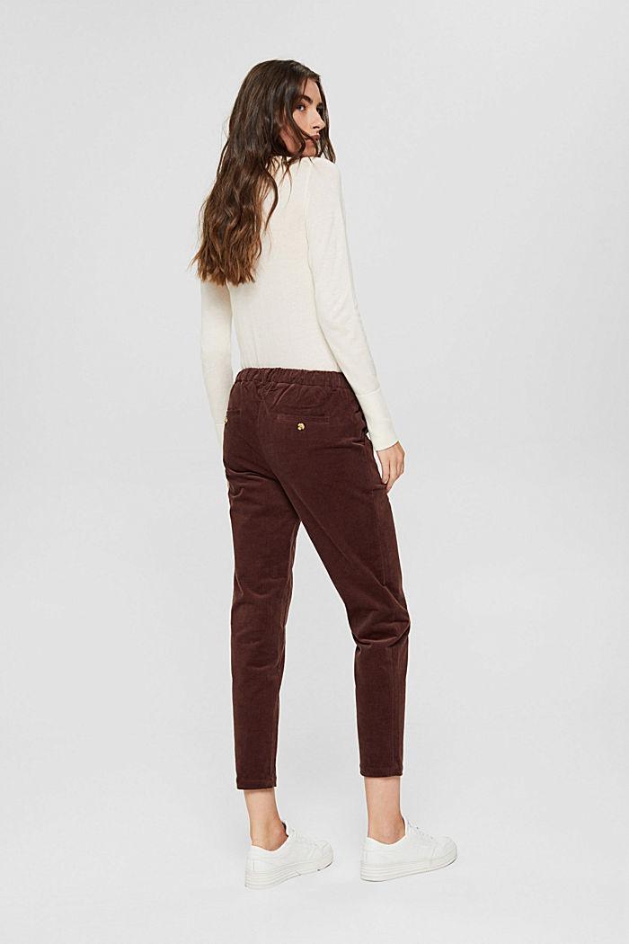 Pantalon à enfiler de style chino en fin velours, RUST BROWN, detail image number 3