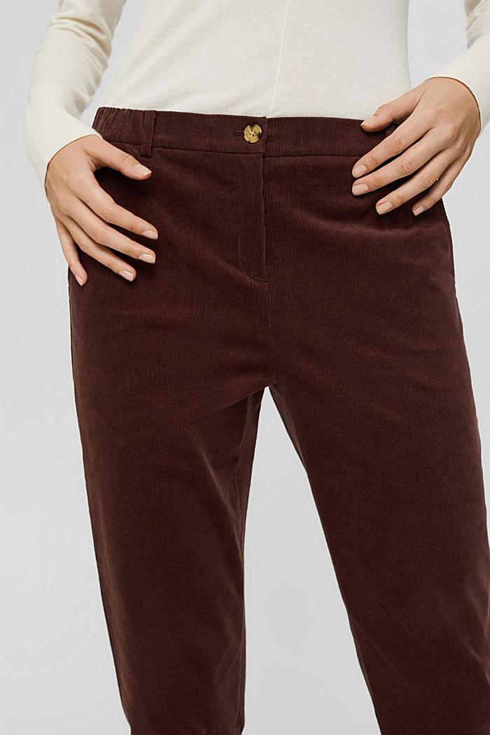 Pantalon à enfiler de style chino en fin velours, RUST BROWN, detail image number 2