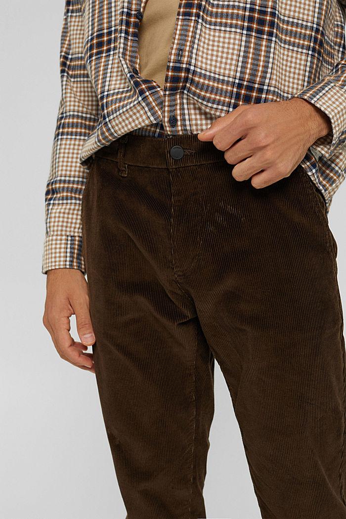 Corduroy broek van 100% organic cotton, BROWN, detail image number 2