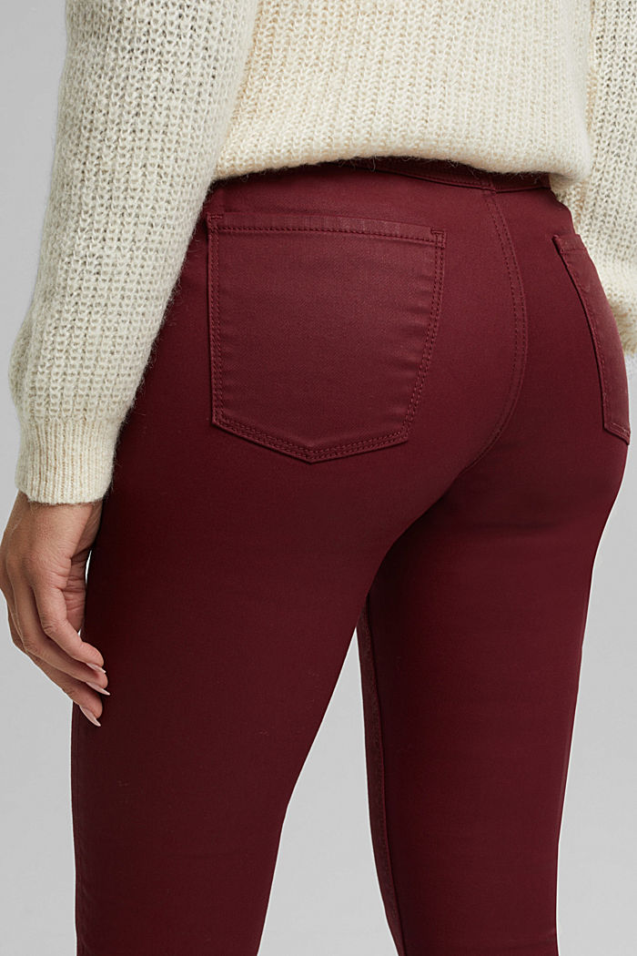 Gecoate jersey broek, BORDEAUX RED, detail image number 2