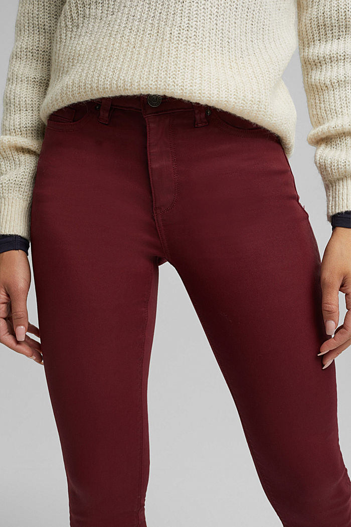 Gecoate jersey broek, BORDEAUX RED, detail image number 5