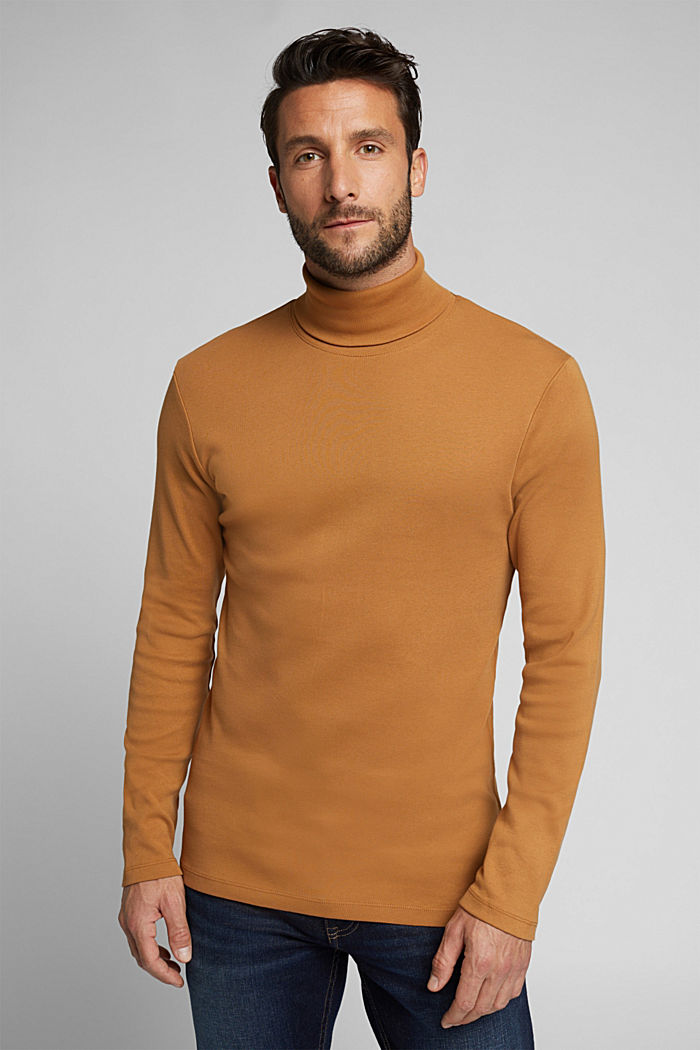Polo neck long sleeve top, organic cotton, TOFFEE, detail image number 0