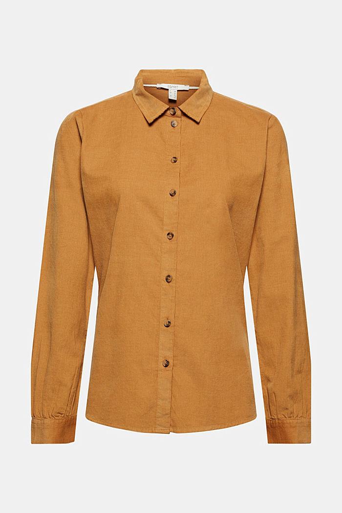 Feincord-Hemdbluse aus 100% Baumwolle