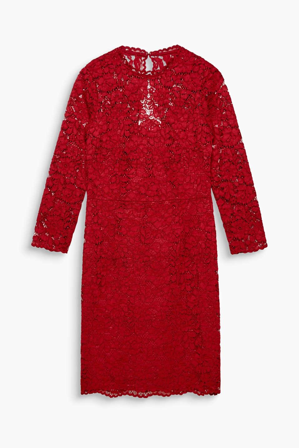 Romantique par excellence ! Dans cette robe fantaisie et féminine à dentelle et col montant, vous attirez tous les regards.