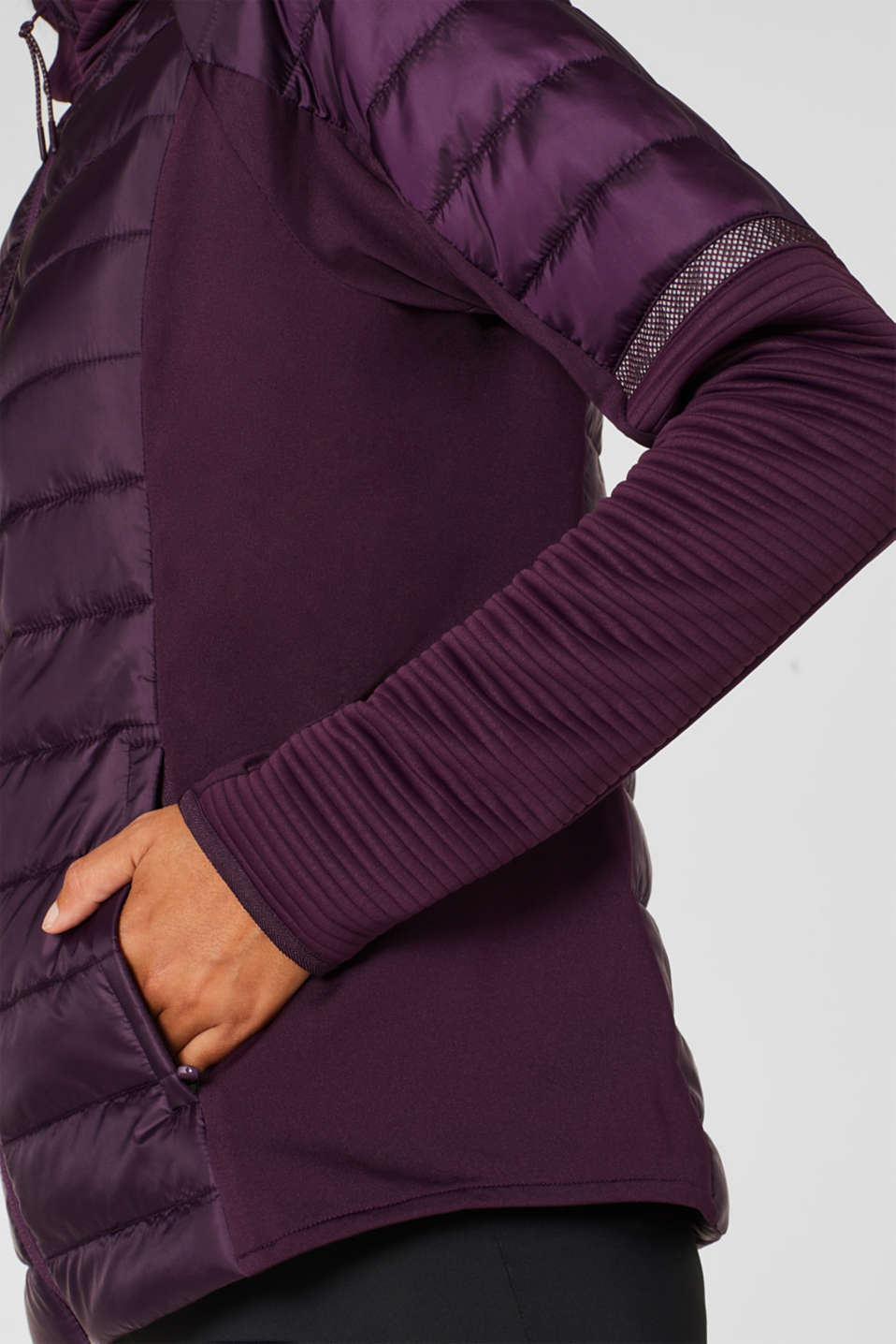 Jacket with 3M™ Thinsulate™ technology, AUBERGINE, detail image number 2