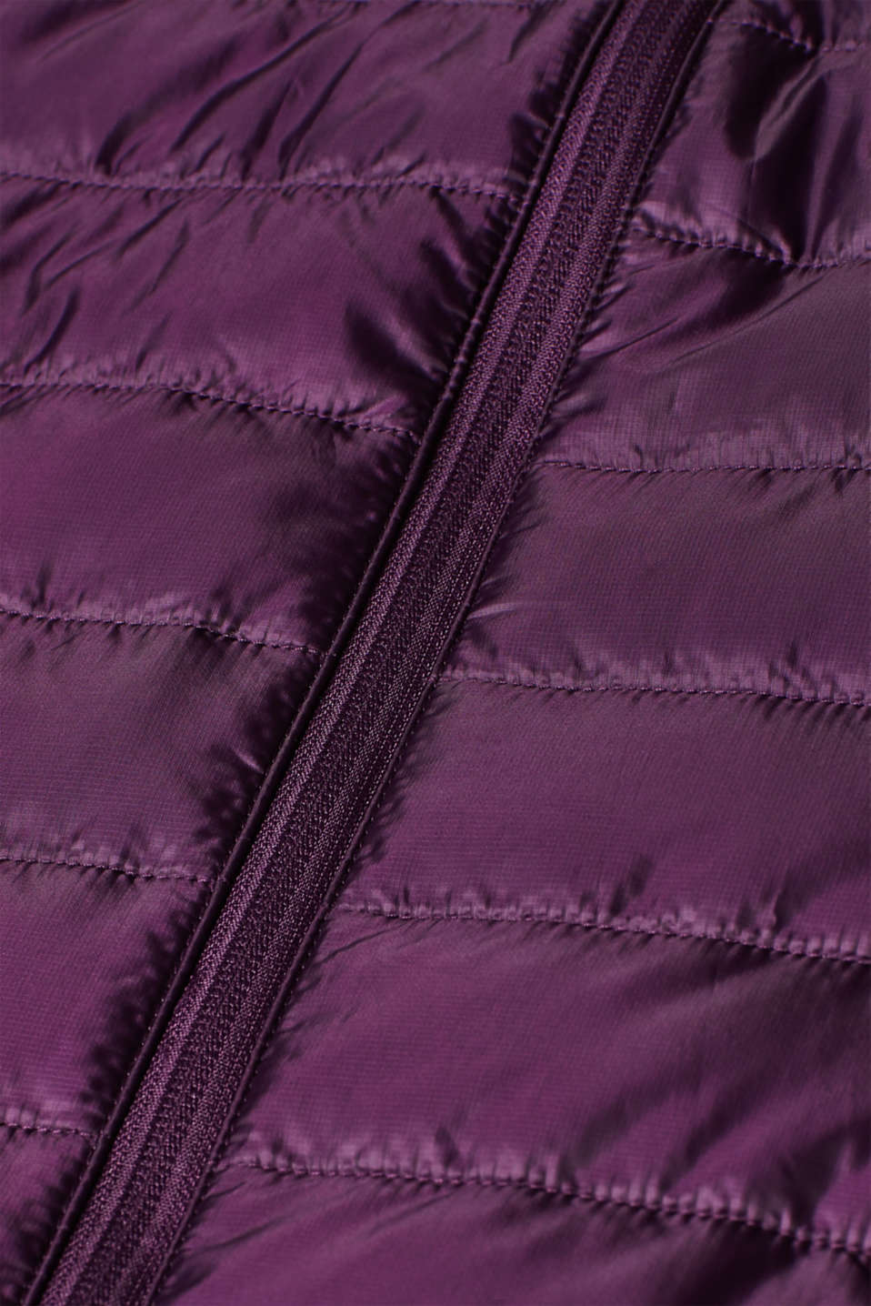Jacket with 3M™ Thinsulate™ technology, AUBERGINE, detail image number 4