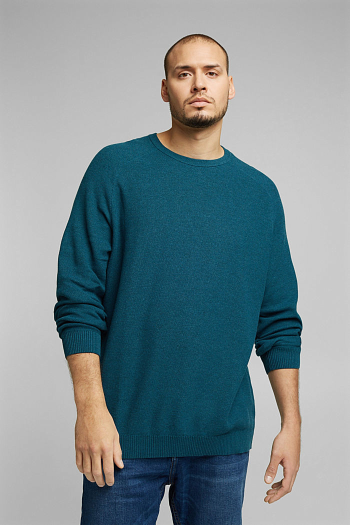 Pullover aus 100% Organic Cotton, TEAL BLUE, detail image number 0