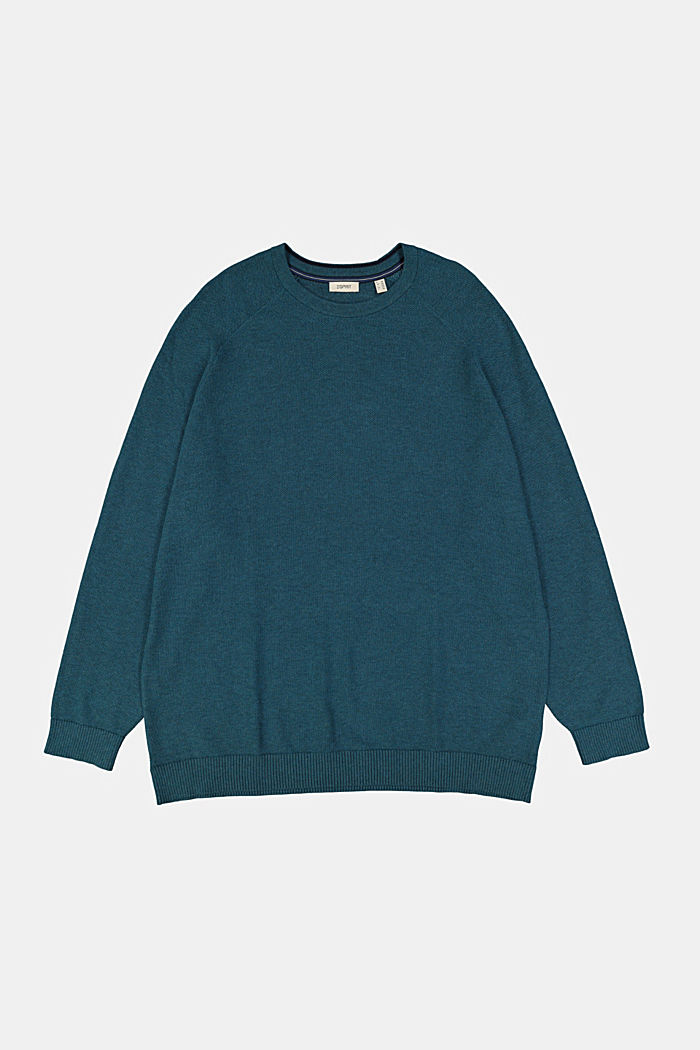 Pullover aus 100% Organic Cotton, TEAL BLUE, detail image number 5