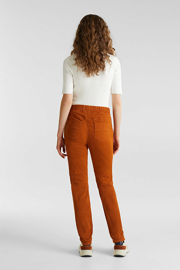 Tracksuit bottoms with an elasticated waistband, CINNAMON, detail image number 3