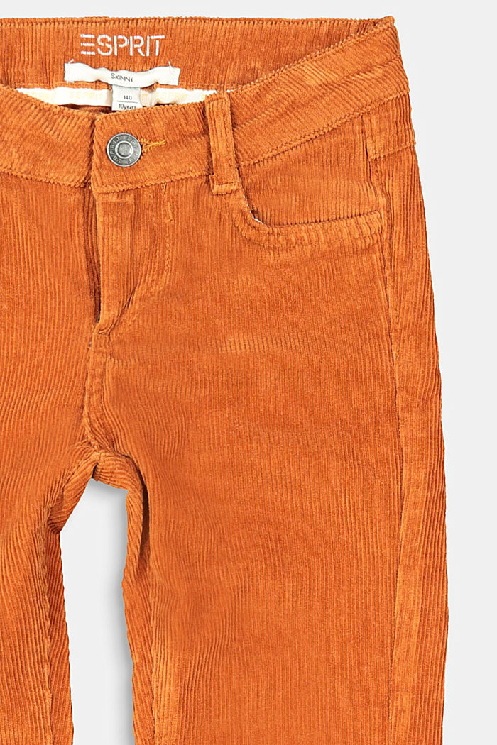 Cordhose mit Verstellbund, RUST BROWN, detail image number 2