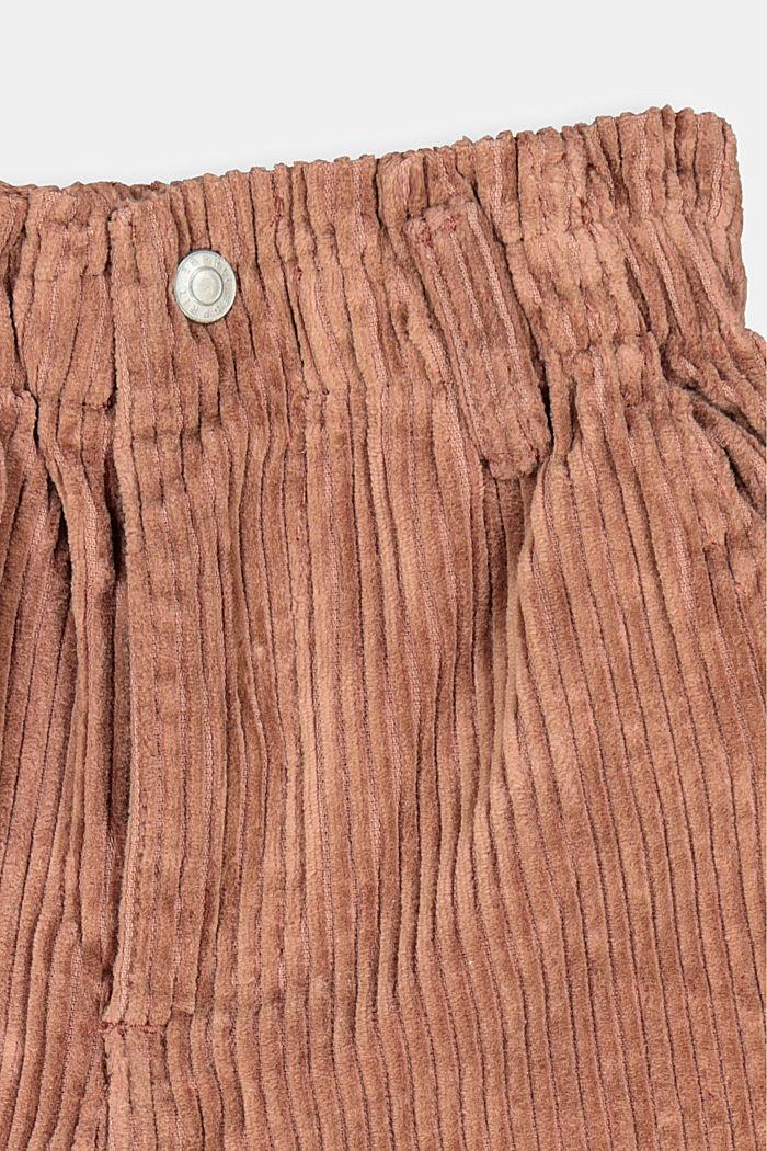 Pantalón corto de pana en 100% algodón, DARK BROWN, detail image number 2