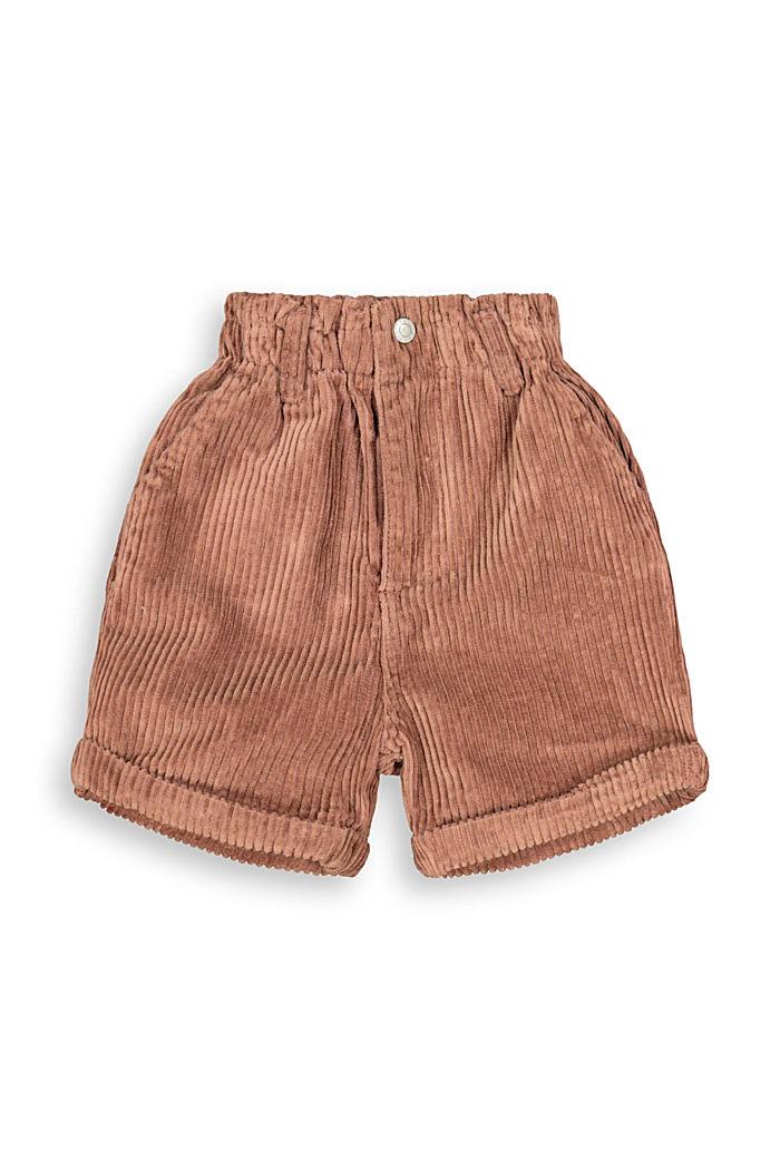 Pantalón corto de pana en 100% algodón, DARK BROWN, detail image number 3
