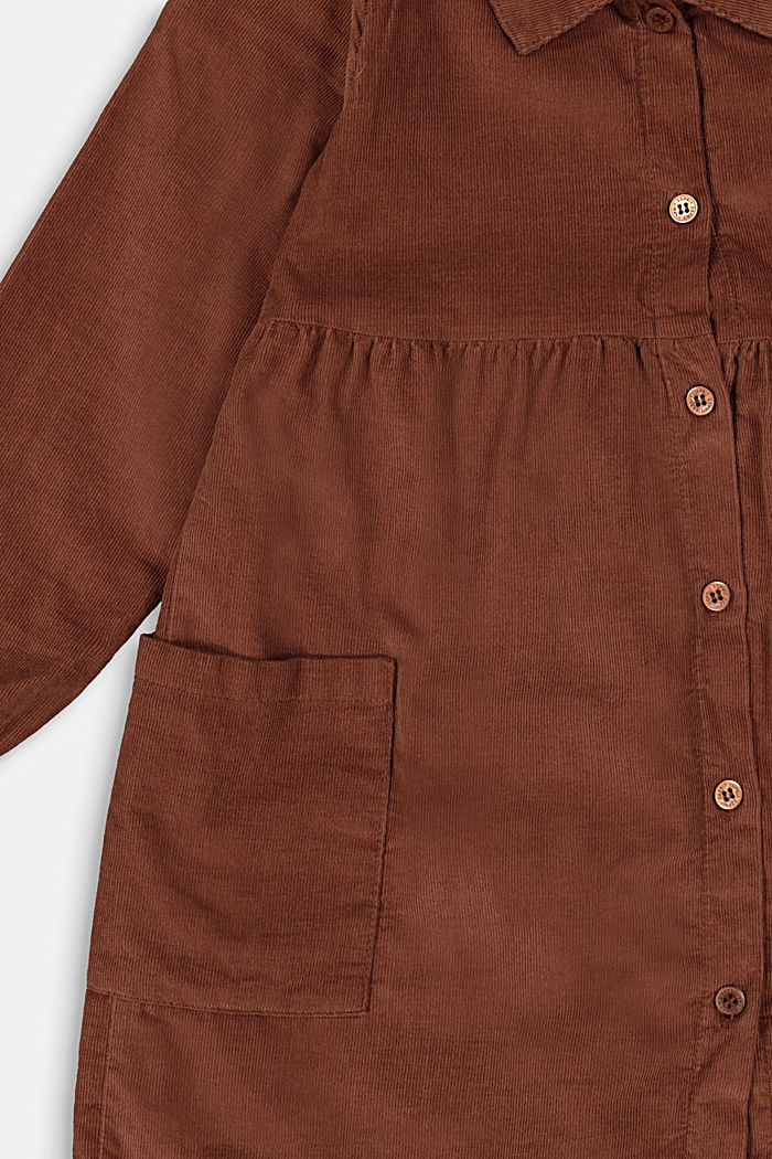 Cotton-needlecord shirt dress, DARK BROWN, detail image number 2