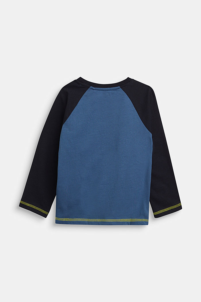 College-style long sleeve top, 100% cotton, BLUE, detail image number 1