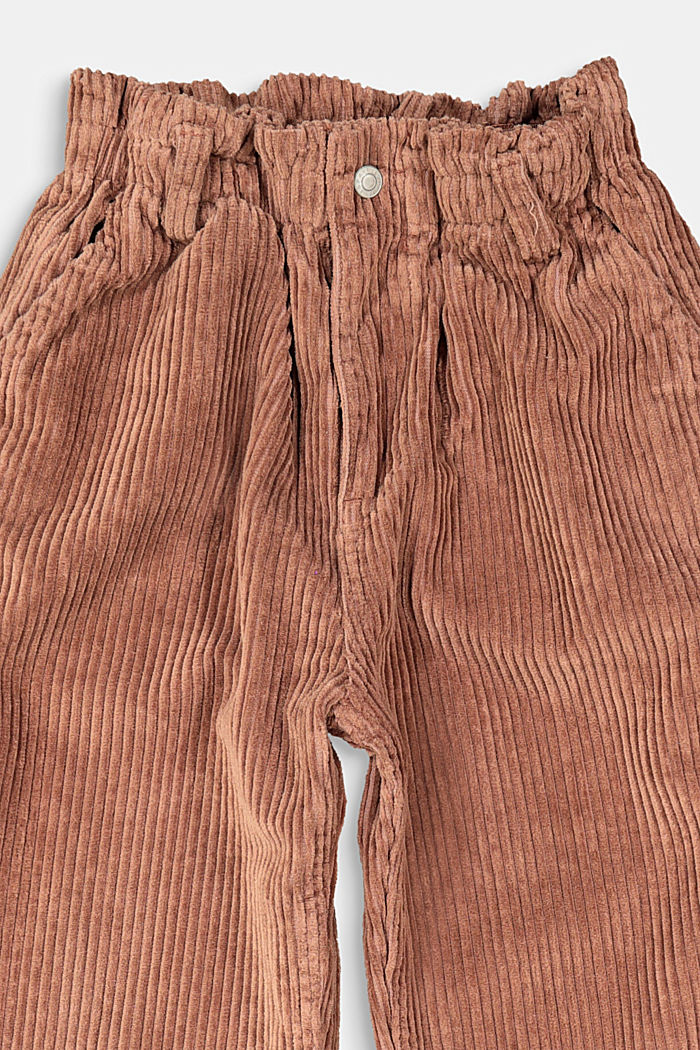 Corduroy trousers made of 100% cotton, DARK BROWN, detail image number 2