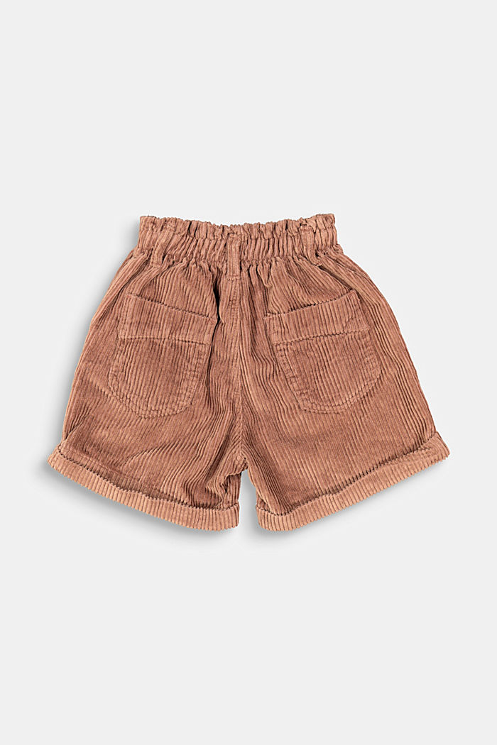 Cord shorts made of 100% cotton, DARK BROWN, detail image number 2