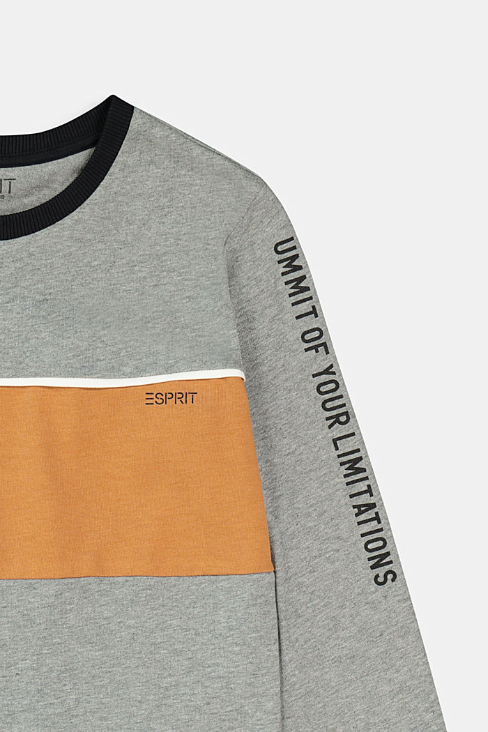 Long sleeve top made of 100% cotton, DARK GREY, detail image number 2