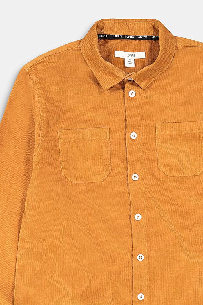 Feincord-Hemd aus 100% Baumwolle, CAMEL, detail image number 2